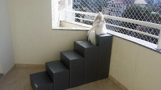 escada pet