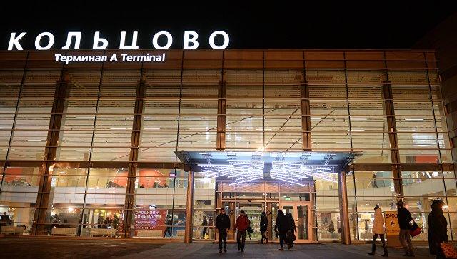 В аэропорту Екатеринбурга прокомментировали инцидент с замерзшей собакой