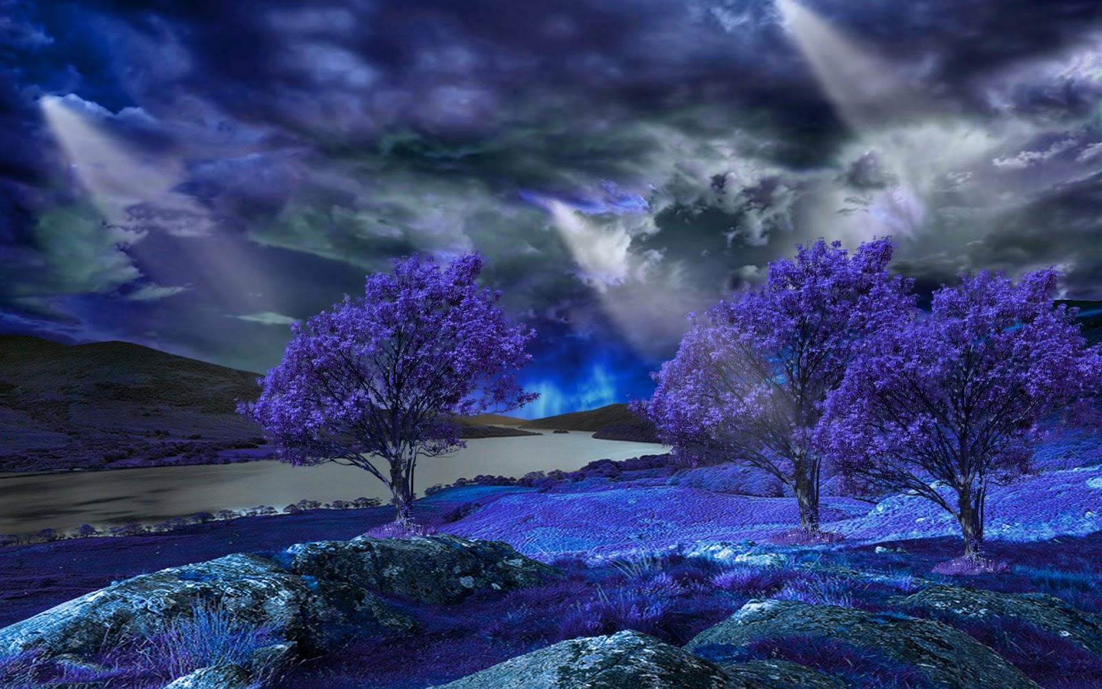 Tạo bài viết mới Ảnh thiên nhiên đẹp mê hồn