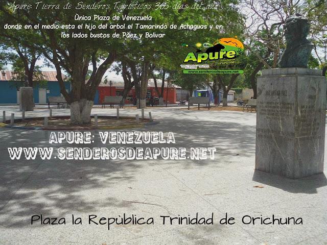 """APURE: Plaza """"La República"""" está en el medio el hijo del árbol el Tamarindo y lados bustos de Bolívar y Páez. HISTORIA."""