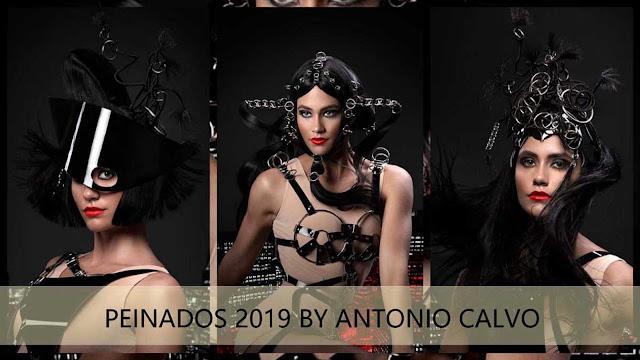 estilismo 2019