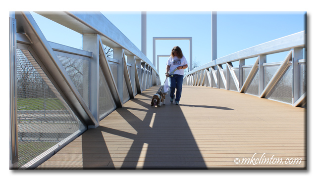 Woman and her Bsset Hound walking over a bridge