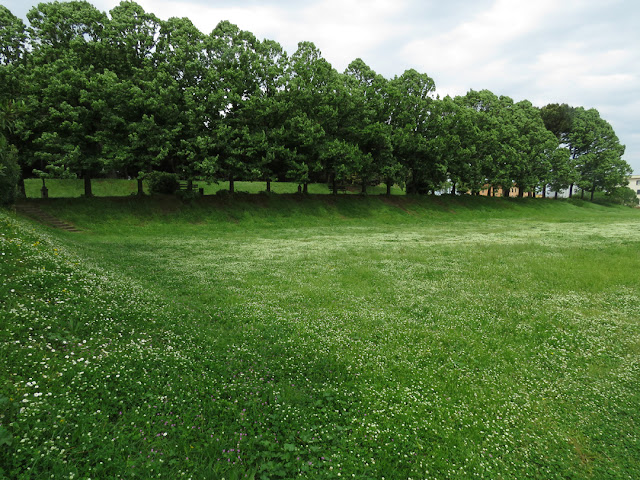 Meadow and trees inside the Fortezza Nuova (New Fortress), Livorno