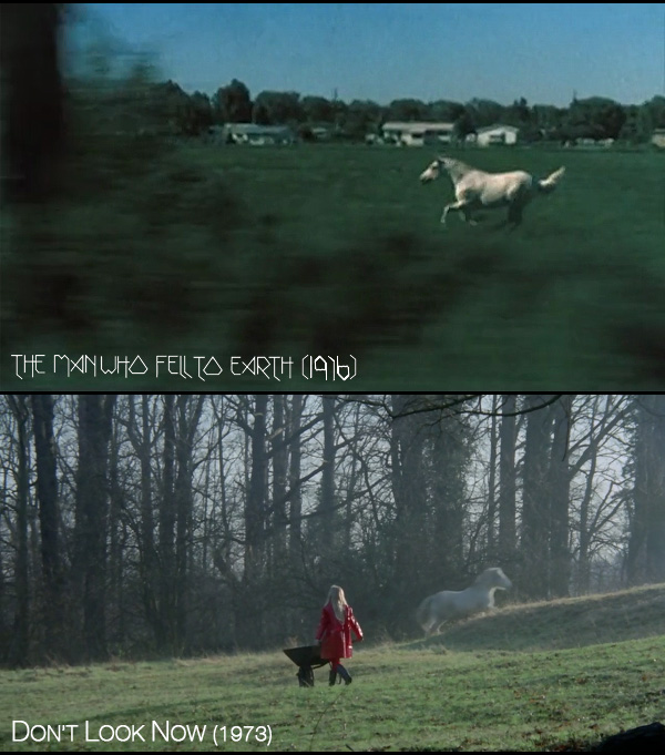 Nicolas Roeg White Horses The Man Who Fell to Earth, Don't Look Now