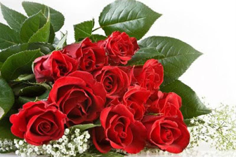 Ý nghĩa của hoa hồng trong ngày lễ Valentine