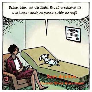 cães no psiquiatra