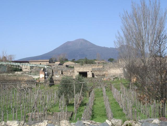 panorama na Wezuwiusz z Pompei