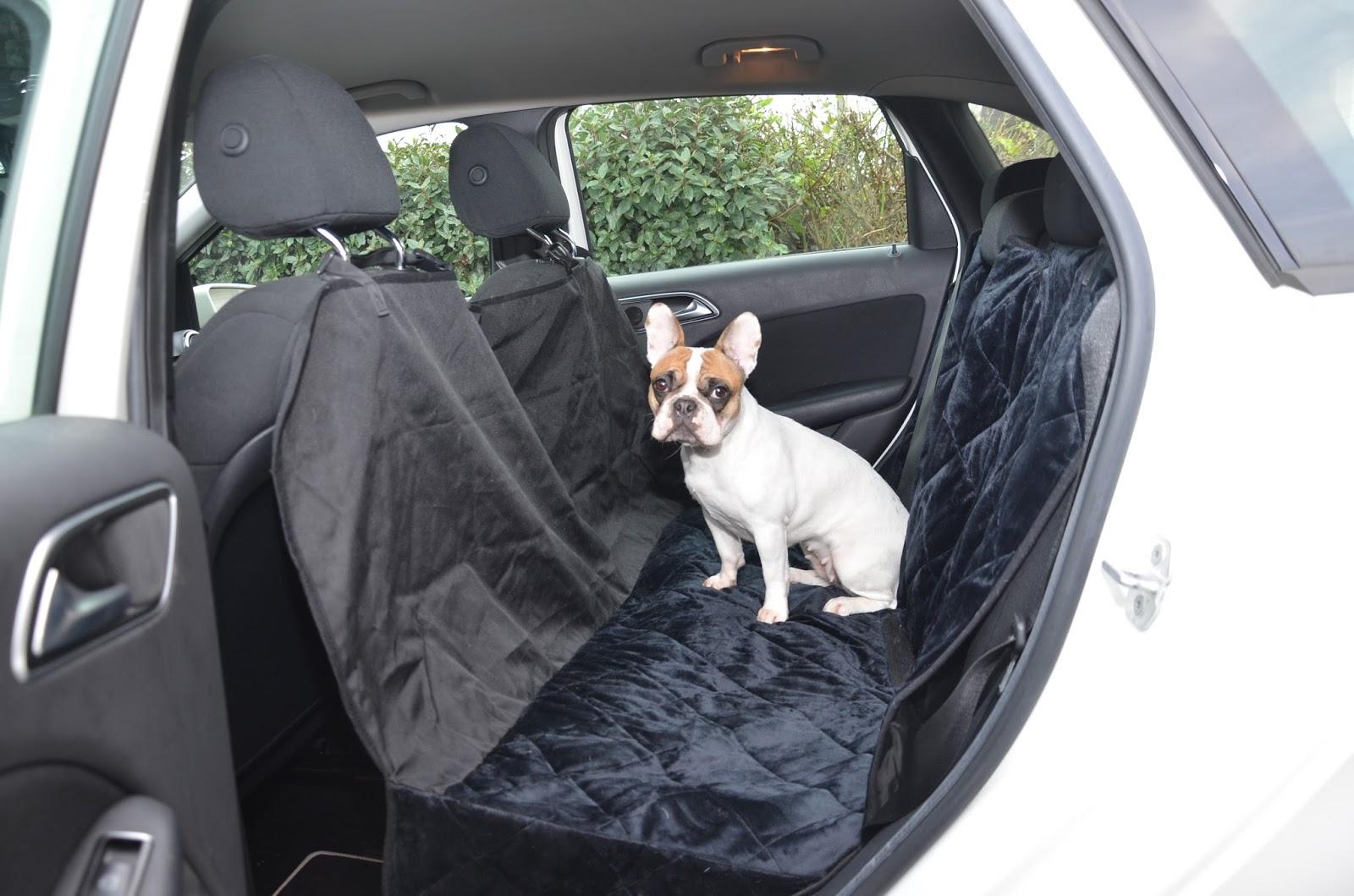 comment prot ger ses si ges de voiture lorsque l 39 on a un. Black Bedroom Furniture Sets. Home Design Ideas