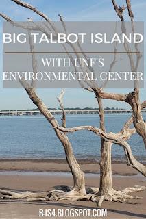 Big Talbot Island, FL