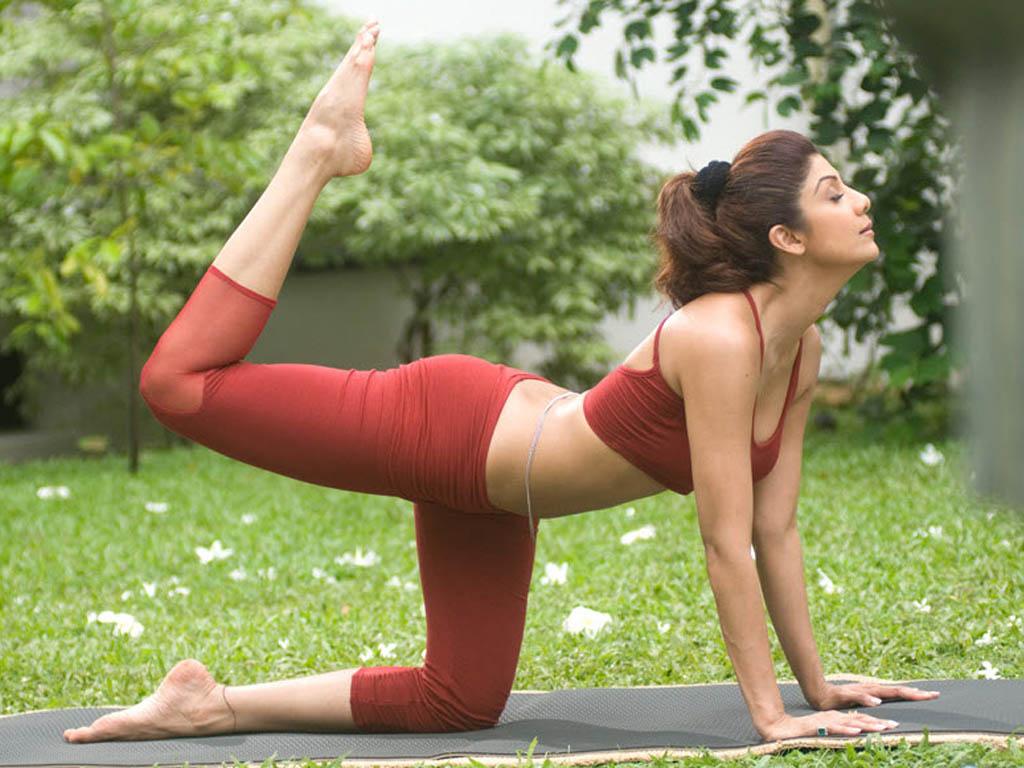 My Images Shilpashetty Yoga Photos