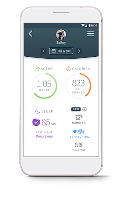 Sure Petcare app daily screen showing Activity, Calories burnt, Sleep quality and Behaviour patterns