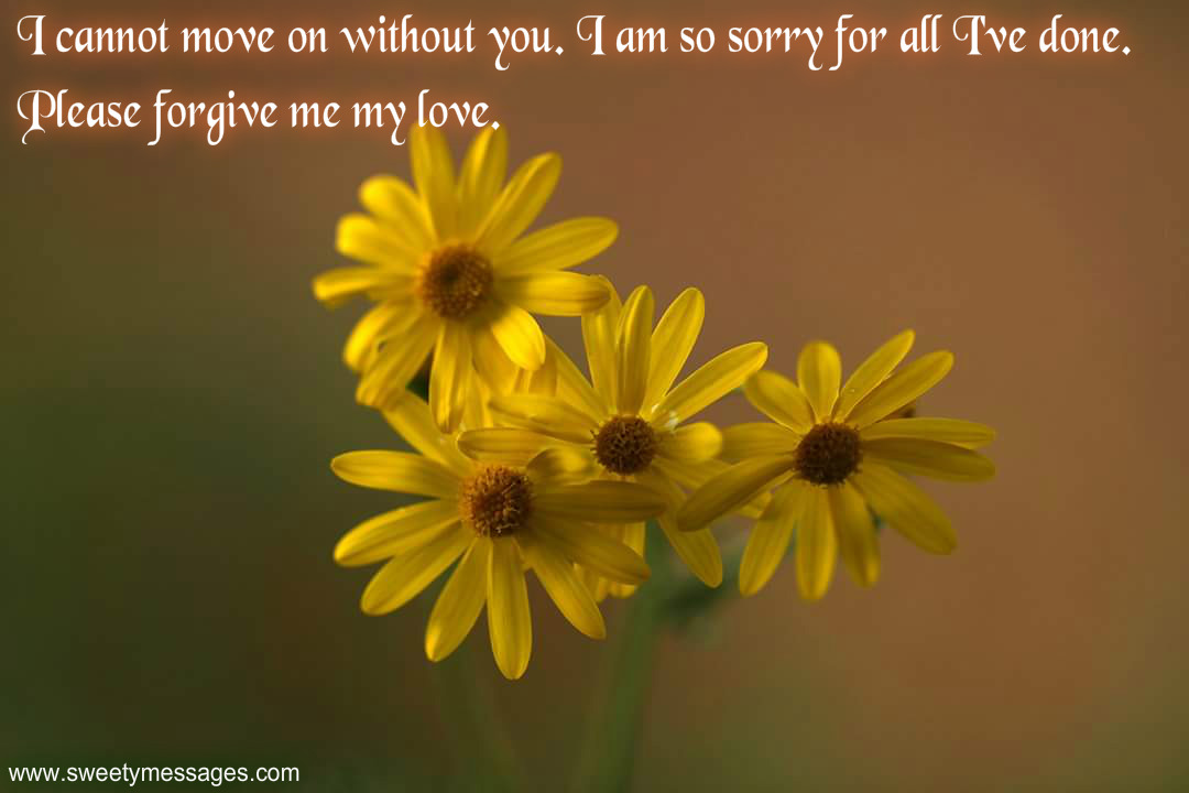 I AM SORRY QUOTES FOR GIRLFRIEND