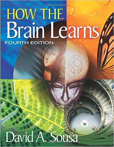 How the Brain Learns front cover