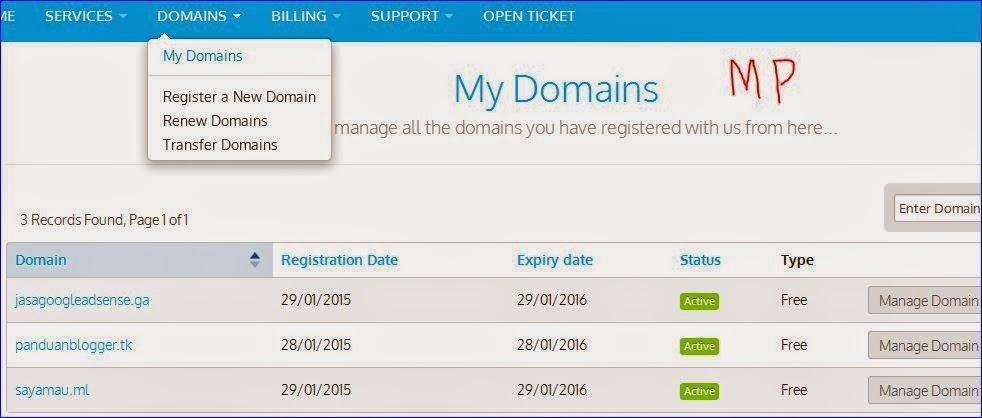 cara setting custom domain dari freenom.com