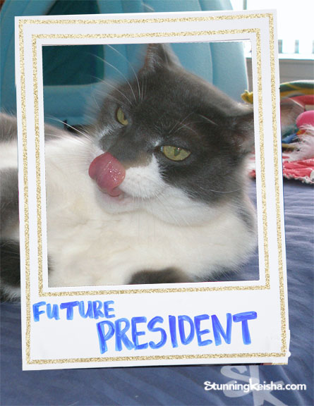 6 Reasons I Should Be the Next President