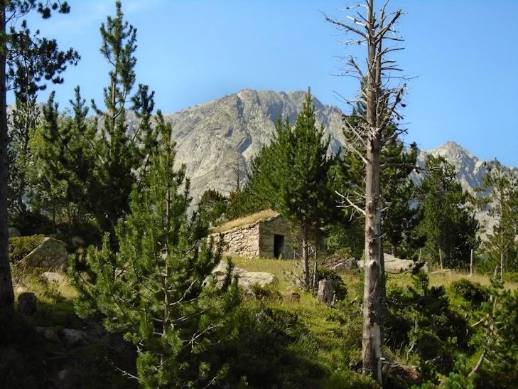 Cabana del Serrat de la Barracota