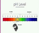 Body ph