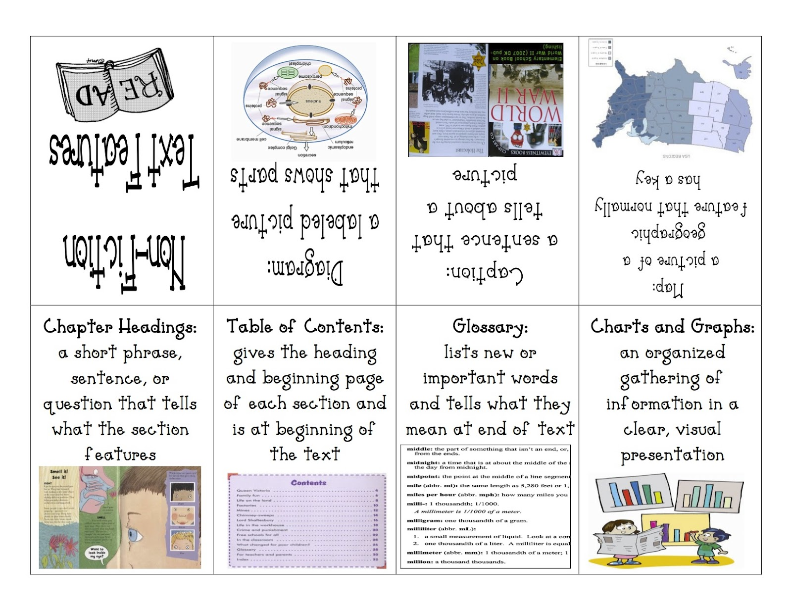 Text And Graphic Features Worksheets   Printable Worksheets and Activities  for Teachers [ 1236 x 1600 Pixel ]