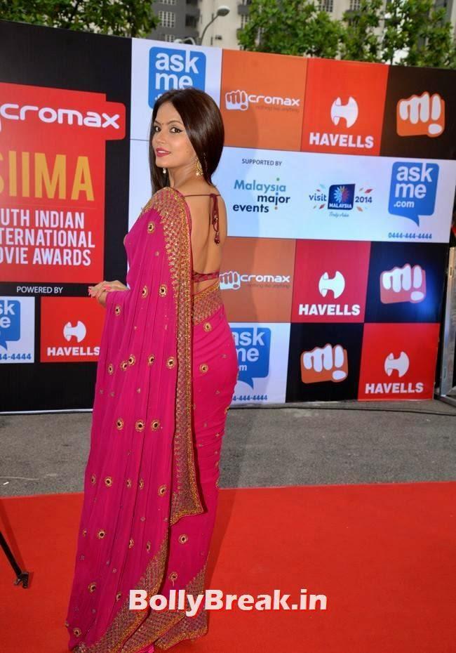 , Neetu Chandra in Backless Red Saree, Hot Pics at SIIMA Awards 2014