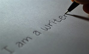 Penulis Artikel