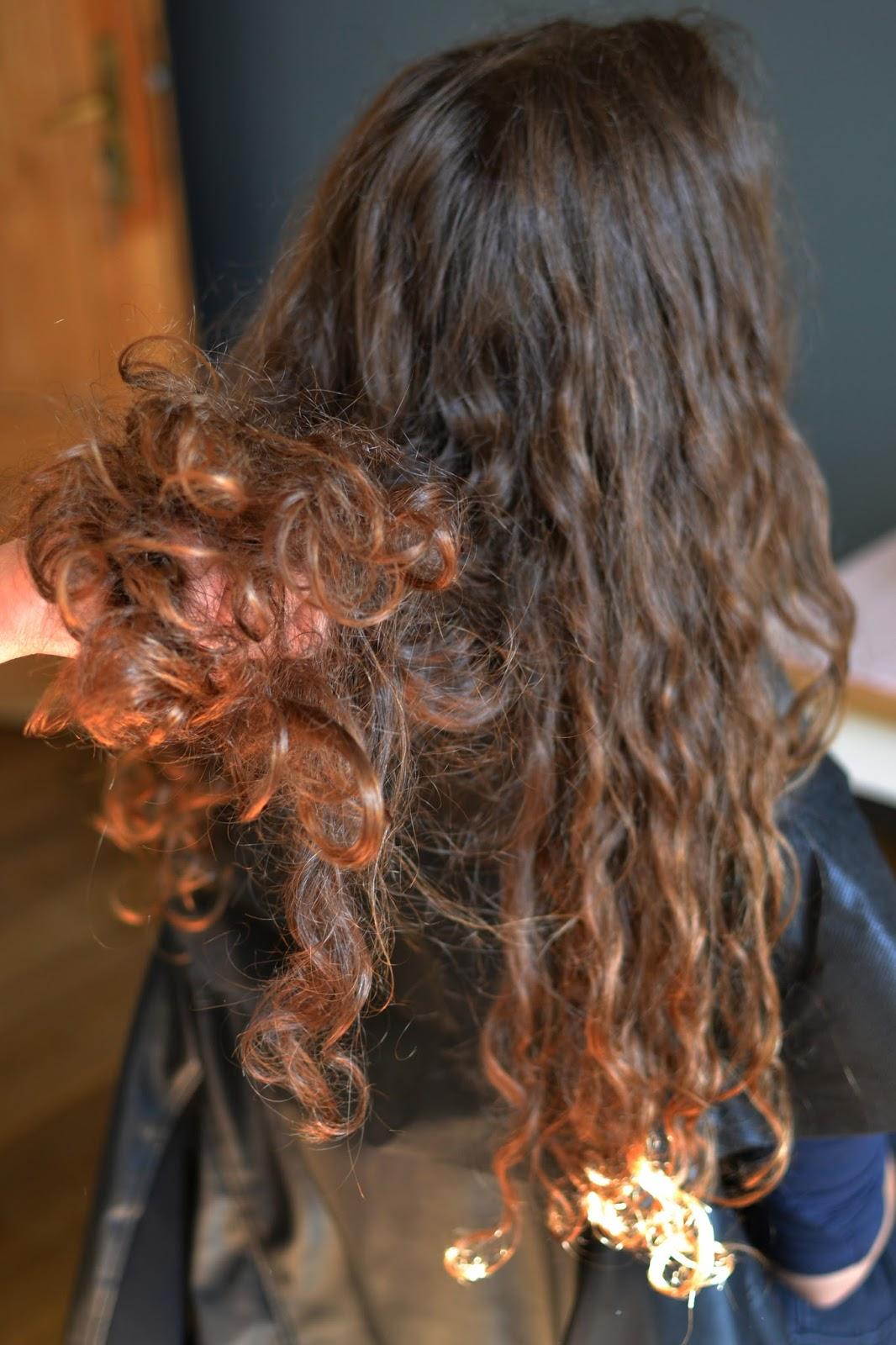 przesuszone włosy