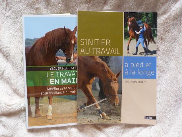 Livres travail à pied équitation