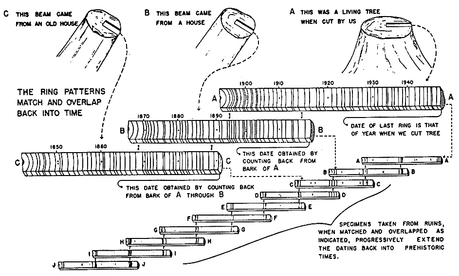 The usefulness of dendrochronology to archaeology essay