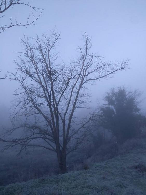 cuadros-vistas-neblina-lapices