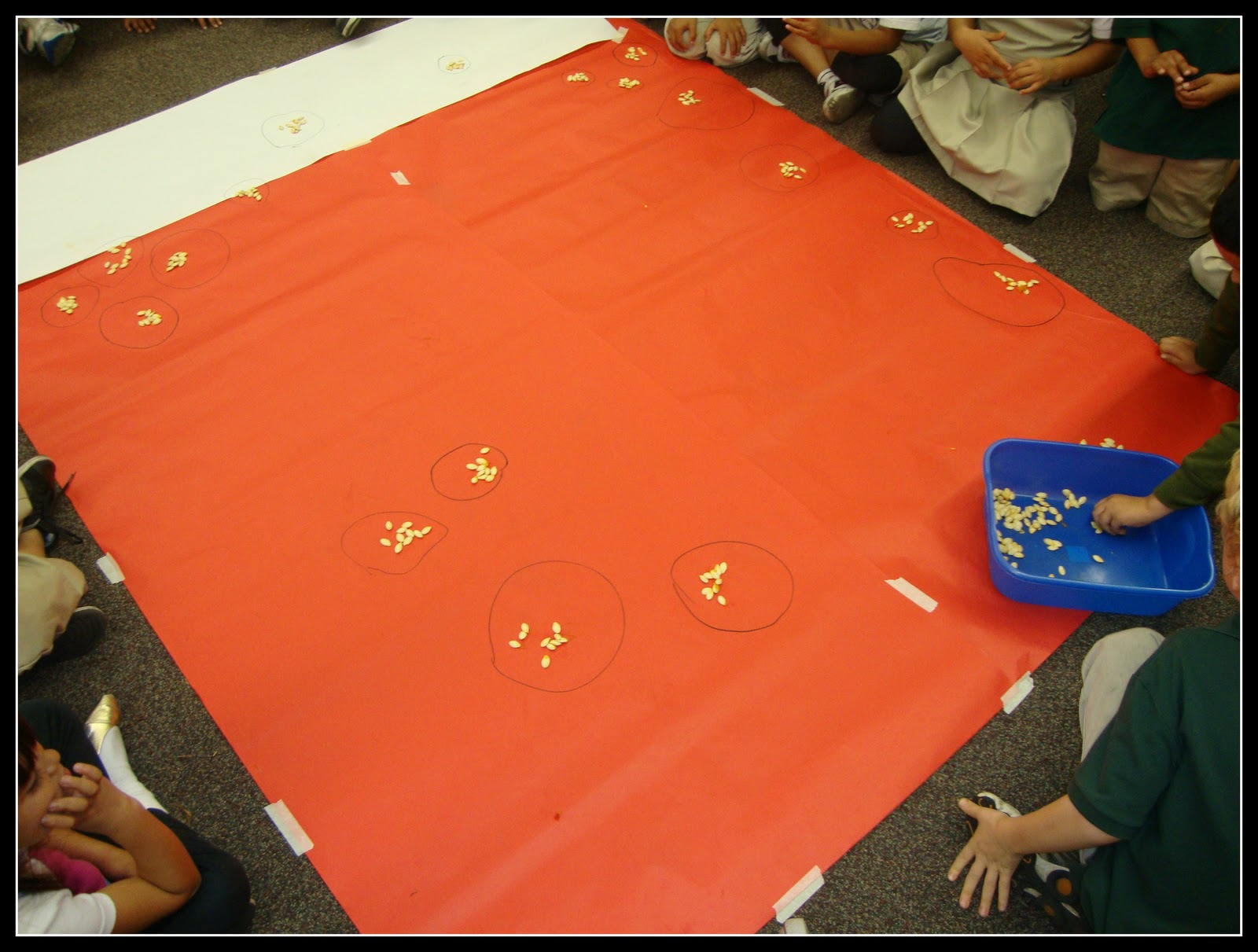 Today In First Grade It S Pumpkin Time