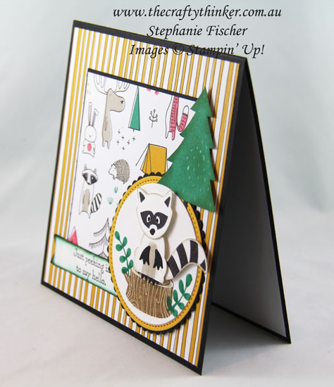 Raccoon, Fox Builder, Pick A Pattern DSP, Sneak Peek Annual Catalogue, #thecraftythinker, Stampin Up Australia Demonstrator, Stephanie Fischer, Sydney NSW