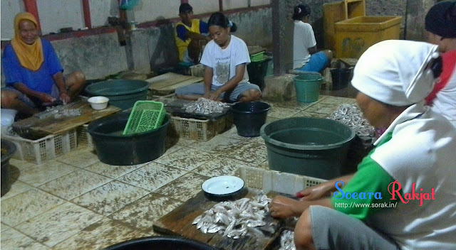 Produksi ikan lapan desa muara, blanakan, subang