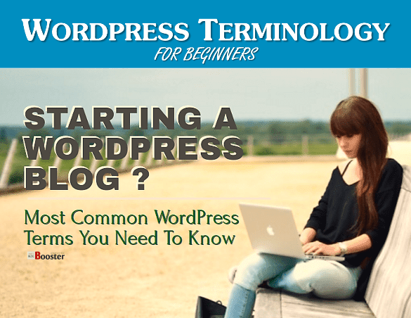 WordPress Terminology: Most Common WordPress Terms You Must Know