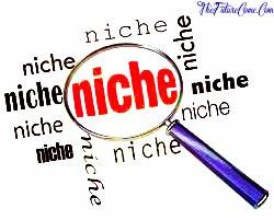 DOMAIN |Choose a Profitable Niche