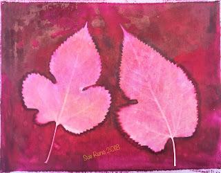 Solarfast prints_Sue Reno_ Image 21