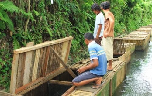 Peluang Usaha di Desa Paling Menguntungkan