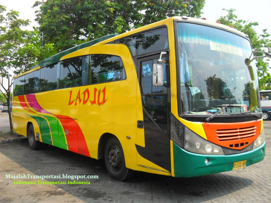 Bus Ladju jurusan Surabaya,Malang, jember, banyuwangi, ambulu, probolinggo, situbondo