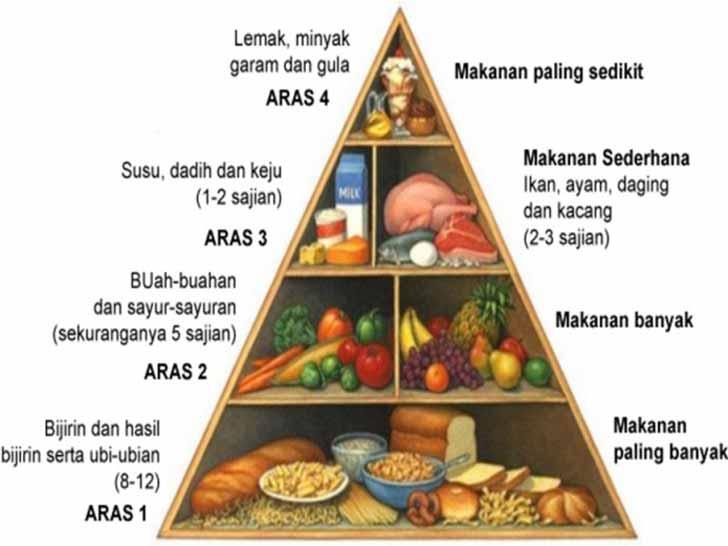 piramid-makanan
