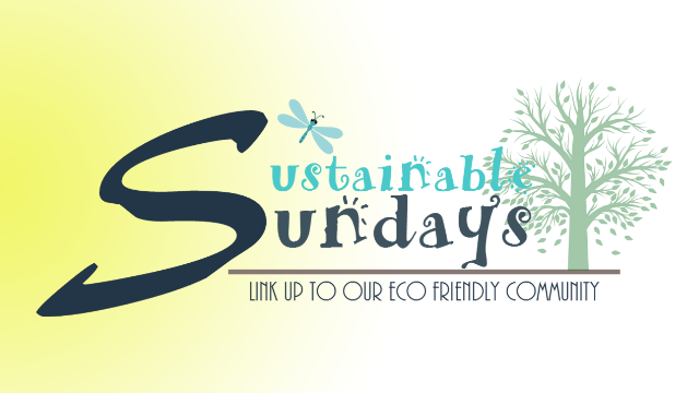 Sustainable Sundays: Eco Friendly Link Up Party