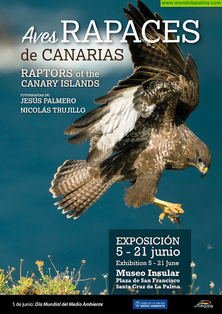 El Cabildo celebra el Día Mundial del Medio Ambiente con una exposición sobre aves rapaces en Canarias