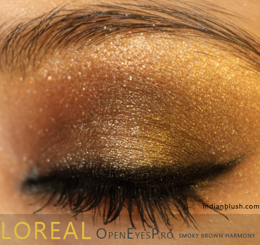 Smoky Brown Eye Makeup with L'Oreal Open Eyes Pro 08 Smoky Brown Harmony