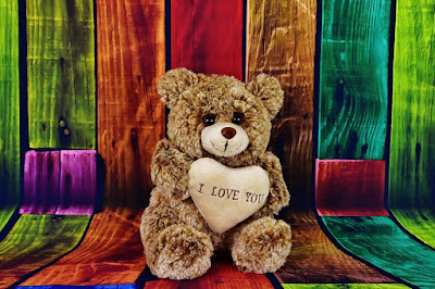 Which day celebrate teddy day | Which day after teddy day