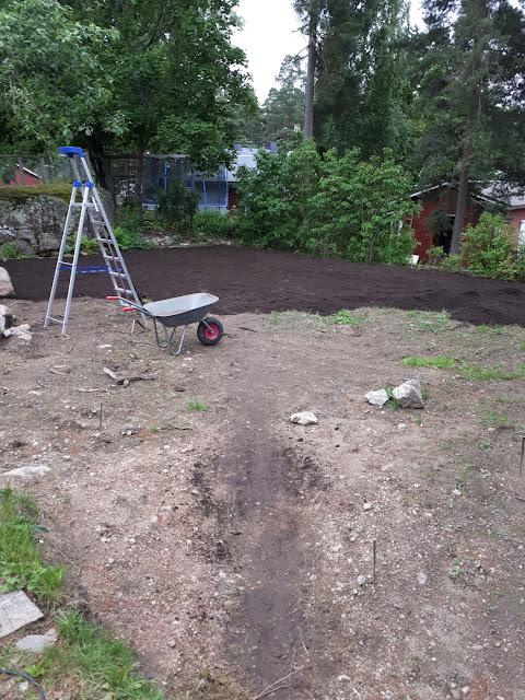 nurmikon perustaminen multa