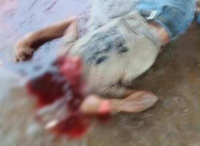 cachaça 51 homem decapita amigo