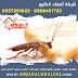 شركة مكافحة الصراصير بالمدينة المنورة 0568451723