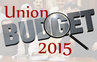 Union Budget 2015, pros and cons highlighted