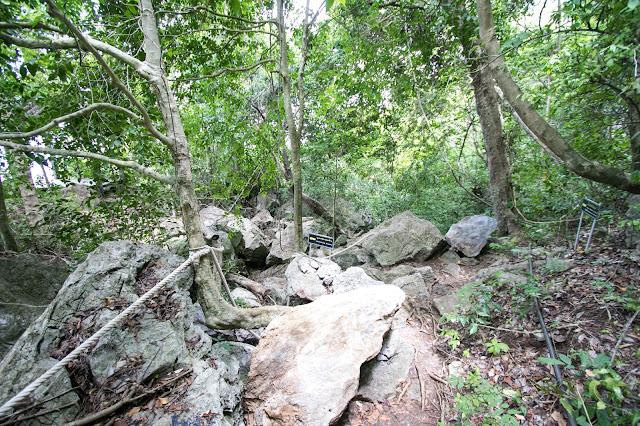 Percorso sull'Isola di Wua Talap-Angthong national park