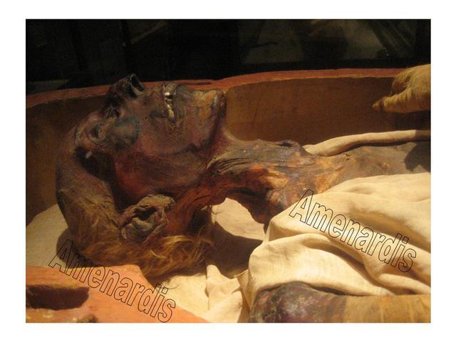 MOMIAS FARAONES, MOMIAS REALES, MOMIAS EGIPTO, momia Ramses II