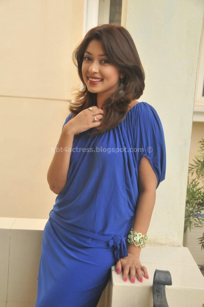 Payal ghosh hot show in photo shoot