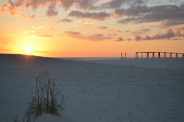 a Beautiful Landscape of grass, white sand and sunset at Panama City Beach