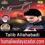 http://www.humaliwalayazadar.com/2015/10/talib-allahabadi-nohay-2016.html